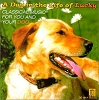 A Day in the life of Lucky: classical music for you & your dog